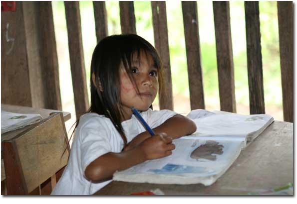 Amazonica Pic 8