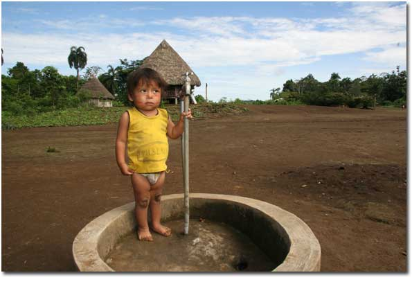 Amazonica Pic 9