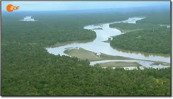 Amazonica im ZDF